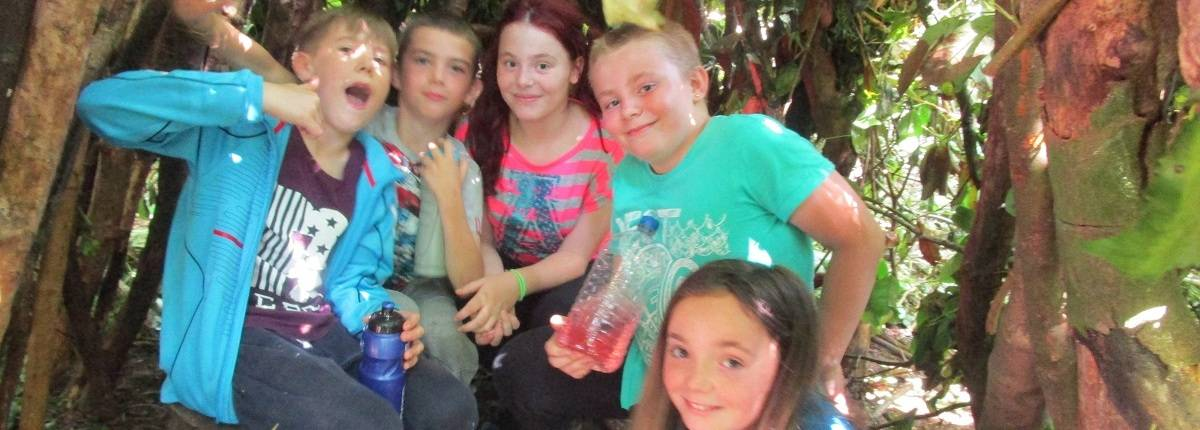 We provide great services for Young Carers